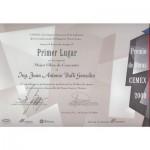 Premio-Cemex-2000---Mejor-Obra-de-Concreto